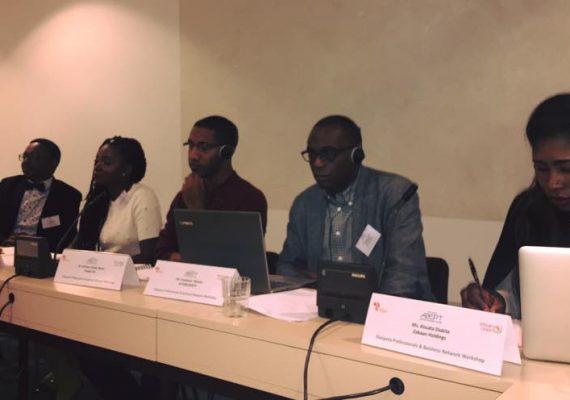 Workshop to establish an African diaspora professional and business network